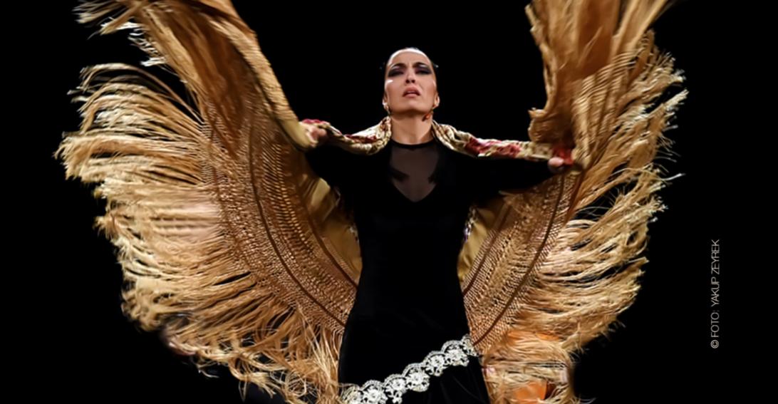 Flamenco Show Ursula Moreno